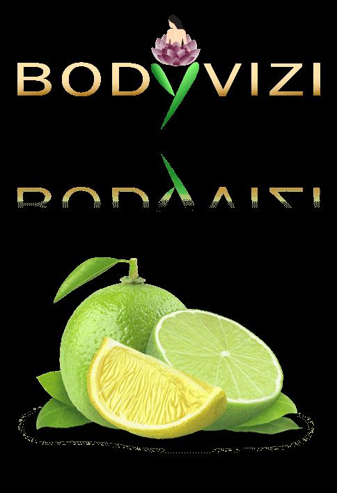 Bodyvizi - LOGO DESIGN PORTFOLIO