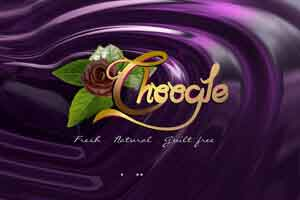 Choogle - WEB DESIGN WORK