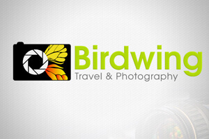 Birdwing - LOGO DESIGN PORTFOLIO